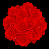 Red rose bunch Stock Image