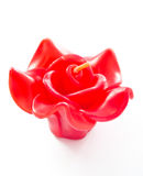 Red rose candle. Isolated on white background stock image