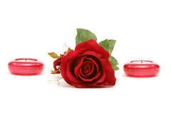 Red rose and candles Royalty Free Stock Image