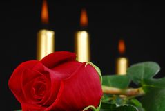 Red rose and candles Stock Images