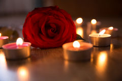 Red rose and candles Stock Photo
