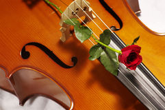 Red rose on cello Royalty Free Stock Photos