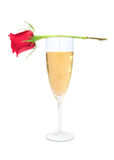 Red rose and champagne royalty free stock photo