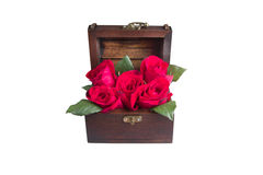 A red rose in chest Royalty Free Stock Image