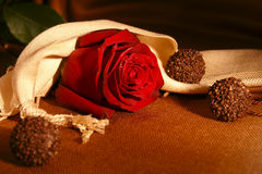 Red rose with chocolate candies. (presents Royalty Free Stock Images