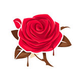 Red rose with chocolate leaves Royalty Free Stock Images