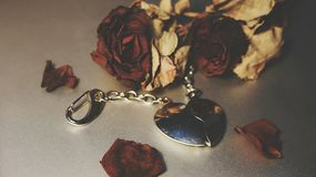 Red Rose and Chromium jewelry Heart Royalty Free Stock Image