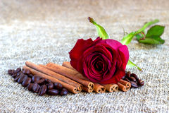 Red rose, cinnamon, coffee beans on a brown background Stock Photo