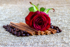 Red rose, cinnamon, coffee beans on a brown background Royalty Free Stock Image