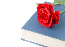 Red rose on the closed book with space for text Stock Photo