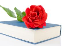Red rose on the closed book with space for text Royalty Free Stock Photo