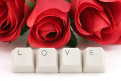 Red rose and computer keys Royalty Free Stock Photo