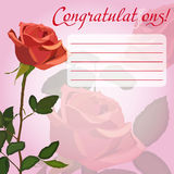Red rose. Congratulation card with flowers red rose Royalty Free Stock Images