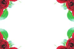 Red rose corner borders Stock Photography