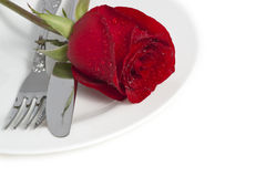Red rose and cutlery on white plate. Valentine Series, Red rose and cutlery on white plate stock photos