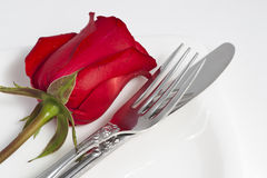Red rose and cutlery on white plate Stock Image