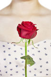 Red rose and decollete woman Stock Image