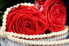 Red rose decorated with jewelry Royalty Free Stock Photos