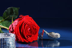 Red rose decorated with jewelry Stock Photos