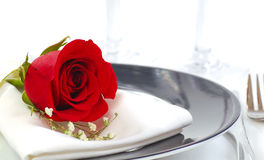 Red rose on a dinner plate stock images
