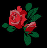 Red rose embroidery. Vector hand drawing royalty free illustration