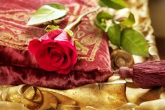 Red rose embroidery vintage velvet pillow Stock Photo
