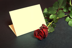 Red rose with empty card. Stock Images