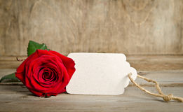 Red rose with empty tag for you text Royalty Free Stock Photo
