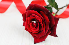 Red rose with engagement ring inside the bud Stock Images
