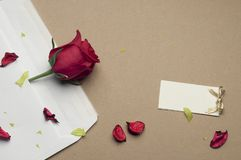 Red rose in an envelope on a light brown background. Beautiful red rose in an envelope on a light brown background Stock Photo