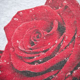 Red Rose Fabric Texture Royalty Free Stock Photography