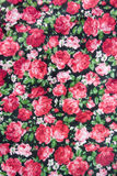 Red Rose Fabric. Texture background Stock Image