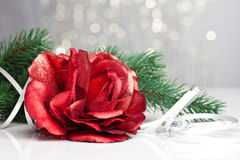 Red rose with festive Stock Photos