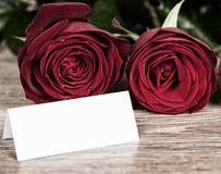 Red rose flower with blank sheet on wood Royalty Free Stock Image