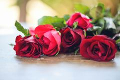 Red rose flower bouquet / Pink and red roses Valentines day love stock photo