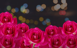 Red rose flower bunch on night background with bokeh light Royalty Free Stock Photography
