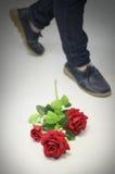 Red rose flower on floor Stock Images