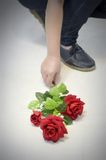 Red rose flower on floor Royalty Free Stock Photography