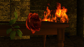 Red Rose Flower in front of a fireplace Royalty Free Stock Images