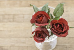 Red rose flower in a glass. On the wooden background Stock Photos