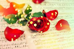Red rose flower Music notes sheet Hearts vintage. Red rose flower and music notes sheet. Hearts bokeh vintage toned stock photos