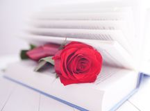Rose and Book romance love Royalty Free Stock Photography