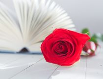 Rose and Book romance love Stock Image