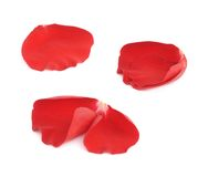 Red rose flower petals set isolated Royalty Free Stock Images
