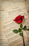 Red rose flower and vintage music notes sheet Royalty Free Stock Images