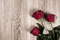 Red rose flower on wood background Stock Images