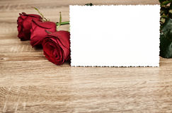 Red rose flower on wood Stock Image
