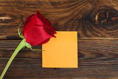 Red rose flower in wood texture background Royalty Free Stock Images