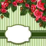 Red rose flowers arrangement and frame Royalty Free Stock Photo