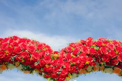 Red rose flowers with blue sky beautiful landscape Royalty Free Stock Photo